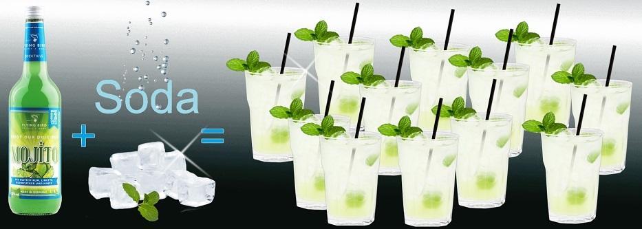 Flasche Mojito Cocktail Premix plus Sodawasser und Würfeleis ergibt 12 fertige Cocktails