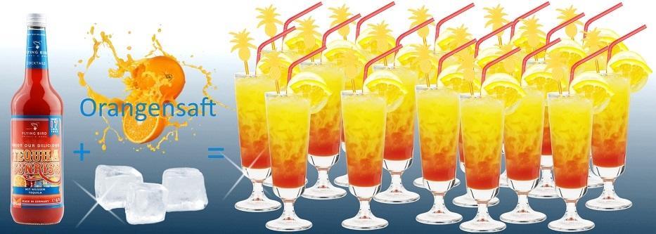 Bild zeigt, dass eine Flasche Tequila Surise Cocktail Premix plus Orangensaft und Eis 17 fertige Cocktails ergibt